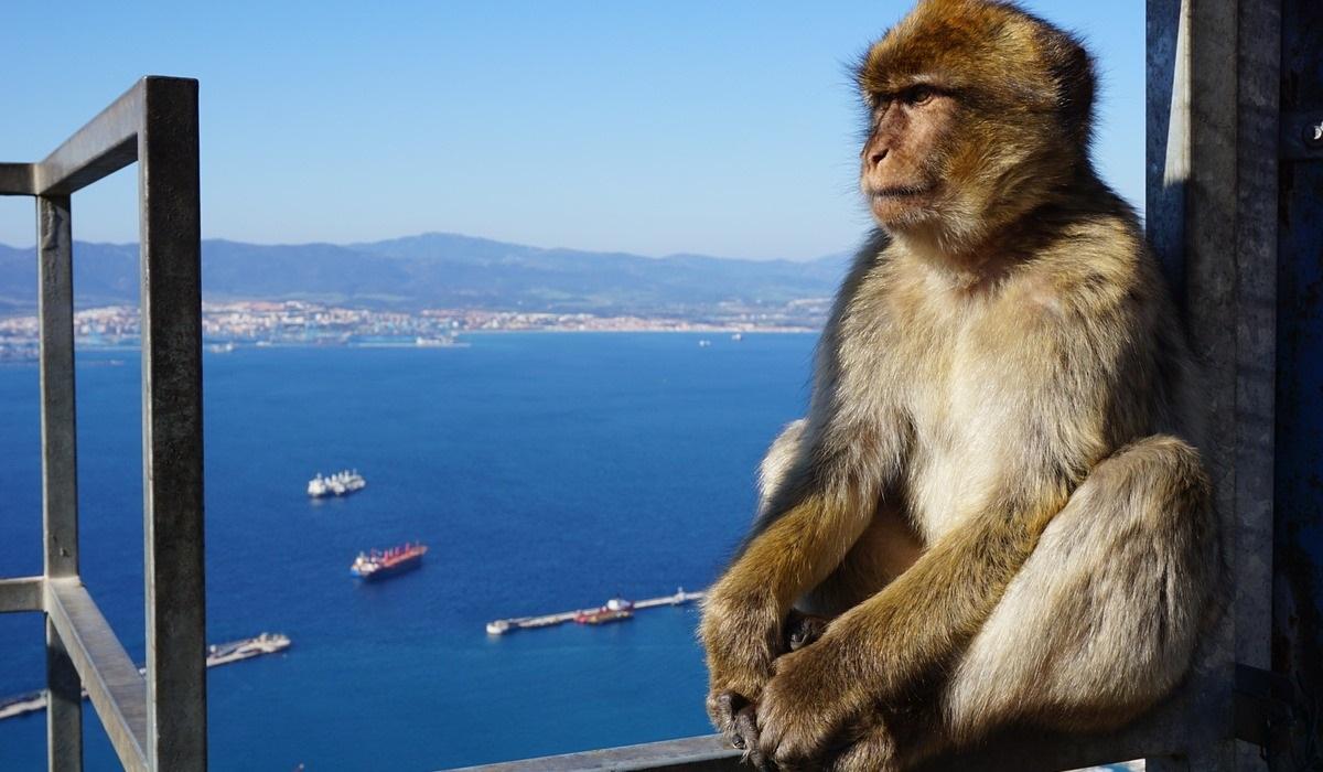 Gibraltar: Forte como um rochedo