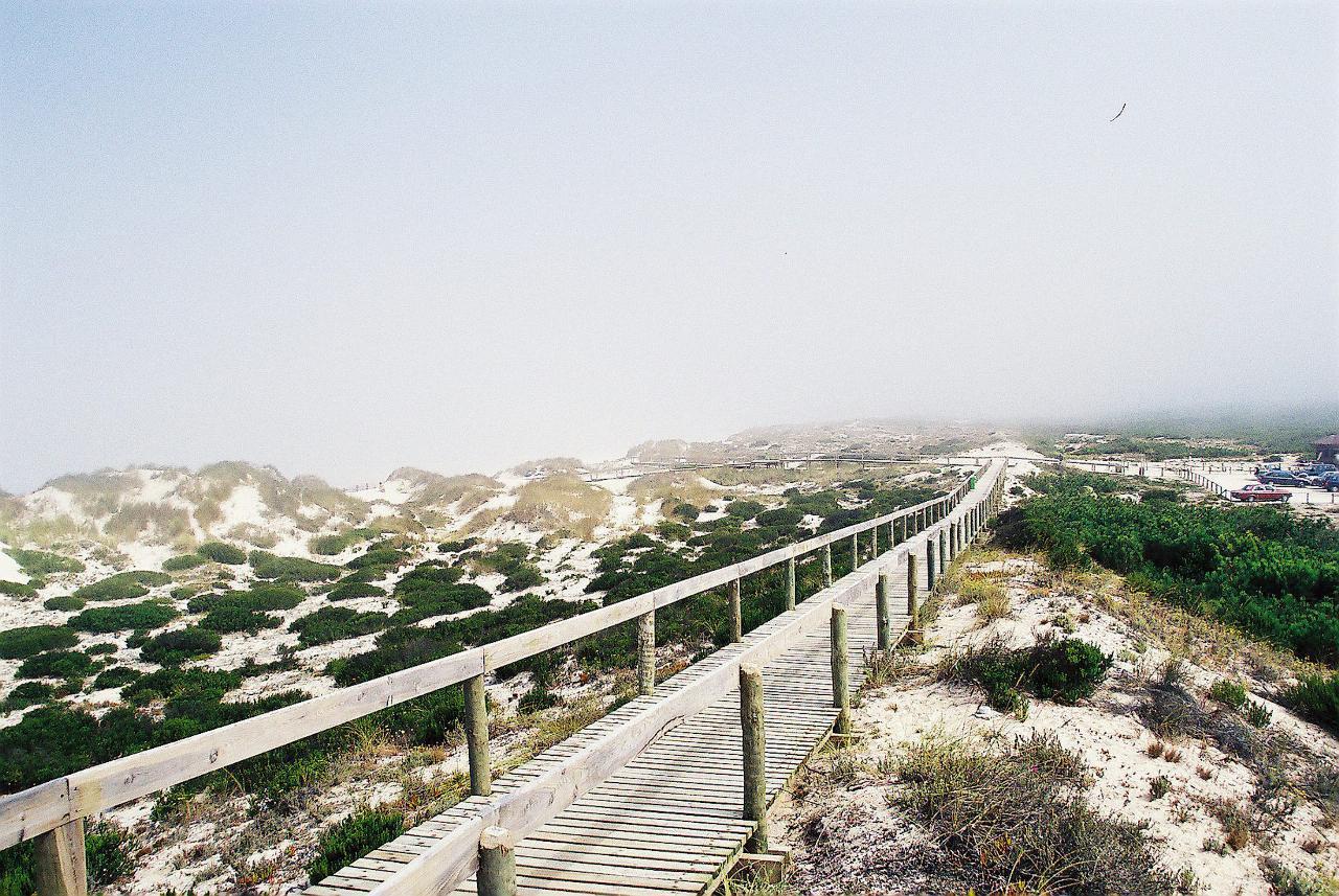 Cinco fantásticos passadiços em Portugal para além dos do Rio Paiva