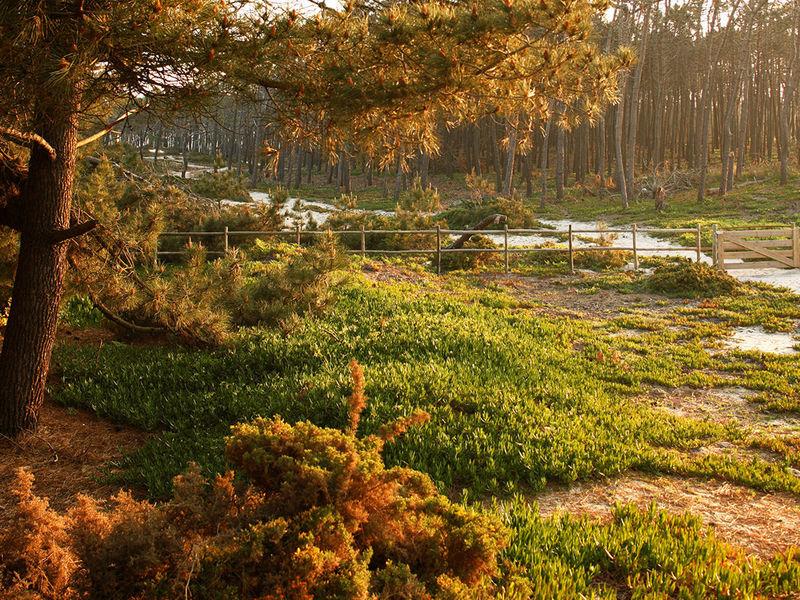 Areias do Seixo, o hotel rural sustentável de luxo a 40 minutos de Lisboa.